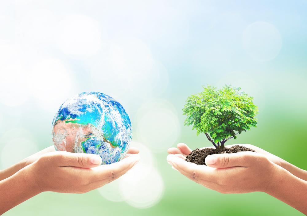 A importância da responsabilidade socioambiental para as empresas